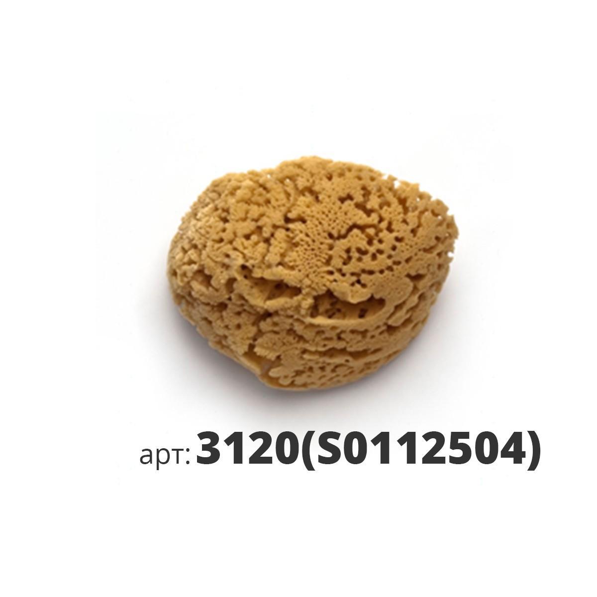 PAVAN натуральная губка морская 3120(S0112504)